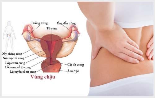 Bệnh viêm vùng chậu ở nữ giới và những điều cần biết 1